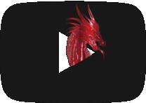 dragontubepro